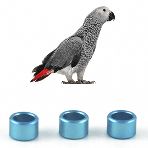 Papağan Bilezikleri - evcilpet.com