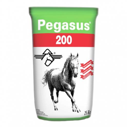 Pegasus 200 at yemi - evcilpet.com