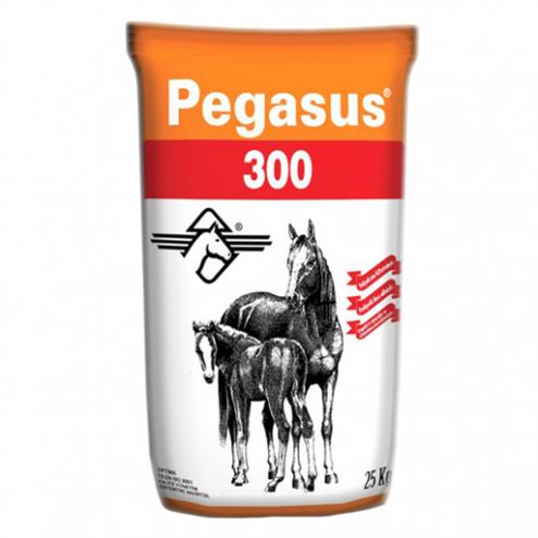 Pegasus 300 at yemi - evcilpet.com